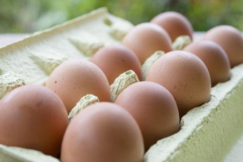 つながり、響き合う。関塚さん家の新鮮な自然卵をお店で味わう。