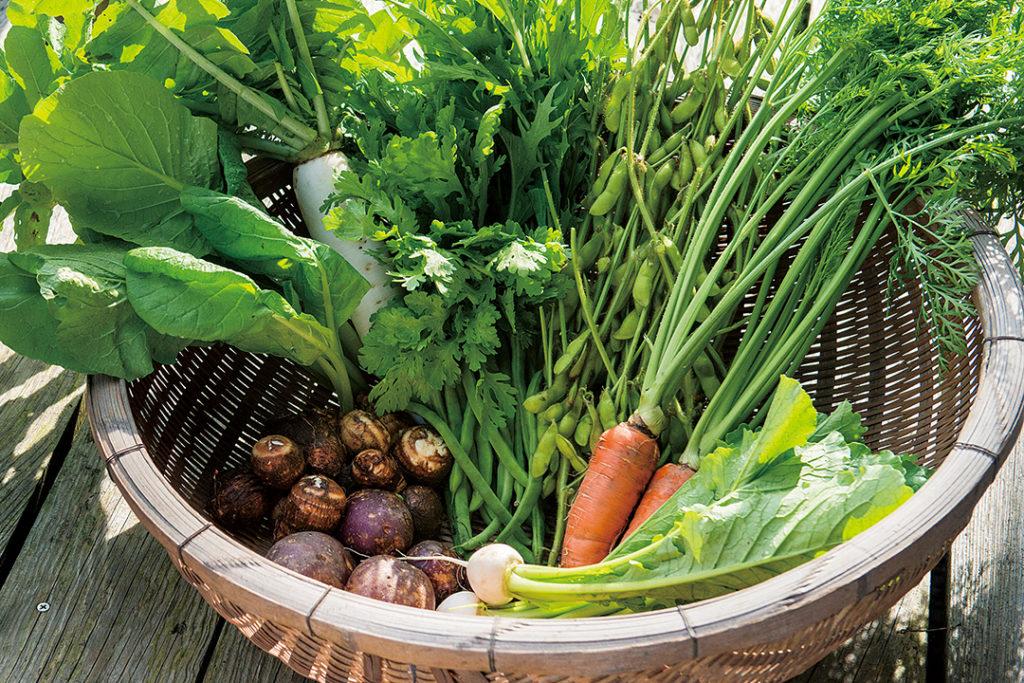届ける想い。関塚さん家の旬な有機野菜をご自宅で。