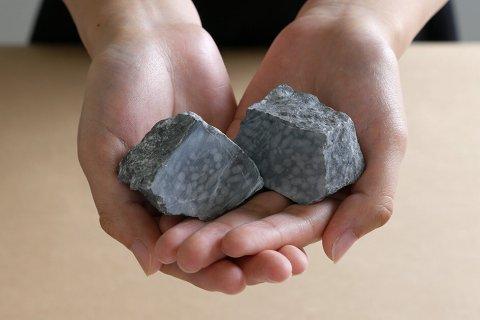 フズリナの化石を磨こう!