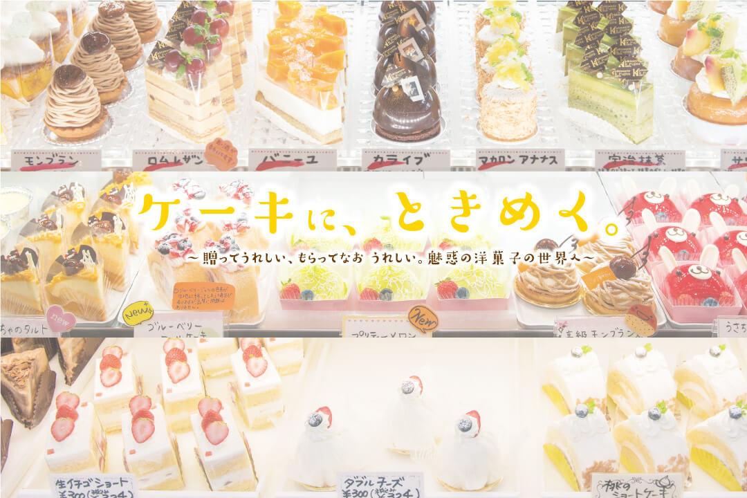 SANOMEDIA Vol.33 特集「ケーキにときめく」