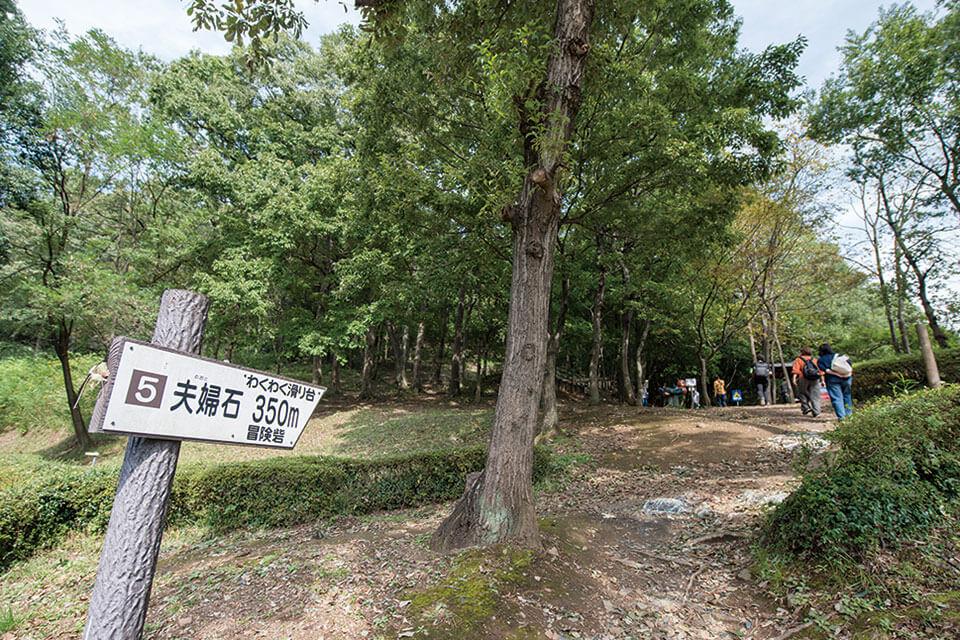 中岳への道のり