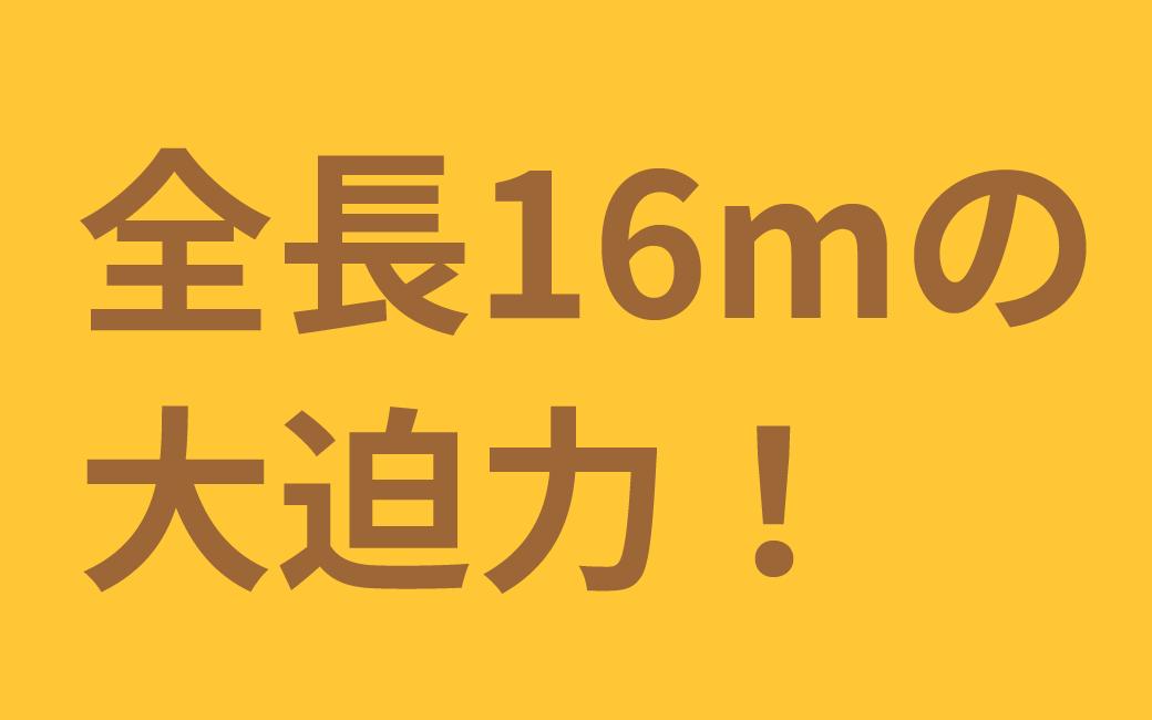 全長16mの大迫力!