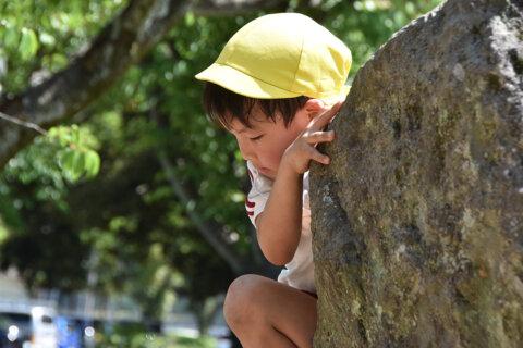 Vol.6 幼児教育は環境による教育