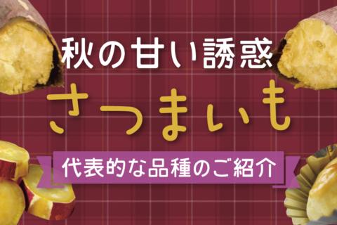 SANOMEDIA Plus Vol.8 みんなで食べたい!さつまいもスイ〜ツ